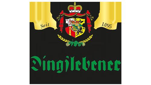 logo-dingslebener